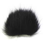 Arctic Fox<br>Black from W. W. Doak