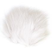 Arctic Fox<br>White from W. W. Doak